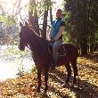 Stále na koni :-)
